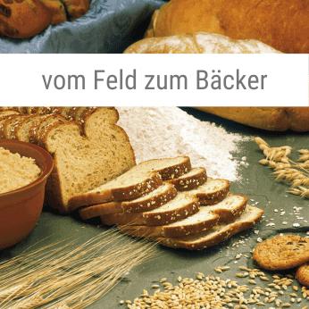 vom-Feld-zum-Bäcker-Spiel