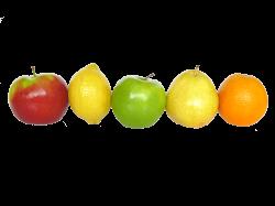 Logo gesund genießen Ernährungsberatung